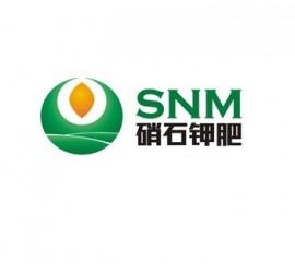 新疆硝石钾肥有限公司