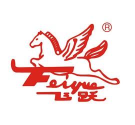 江蘇飛躍機泵集團有限公司